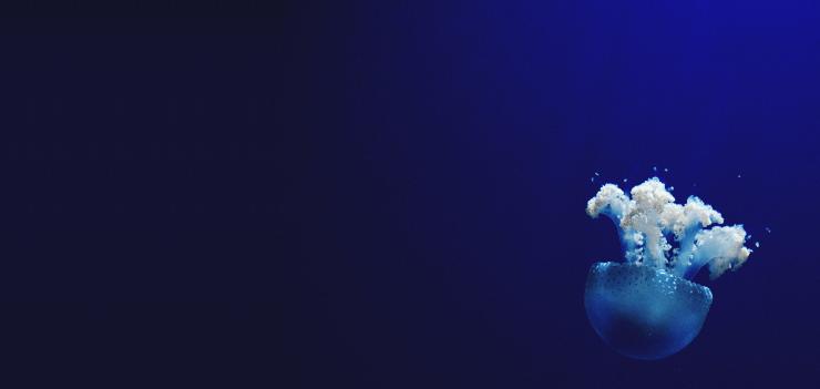 Plugin blue